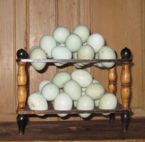 Ballymote house home produced Aracuna eggs, Ballymote House, Country House B&B, County Down