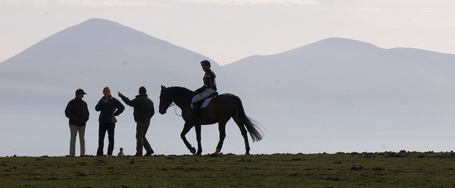 Riding- Tyrella over looking Mourne mountains